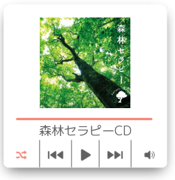 Mini_Music_Player.png