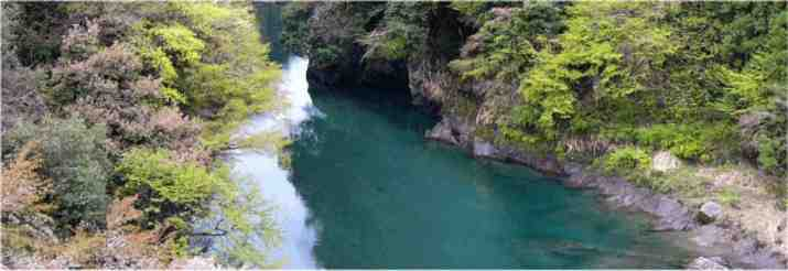 fig_main_okutama_rn.jpg
