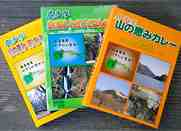 fig_sub_curry_rn.jpg